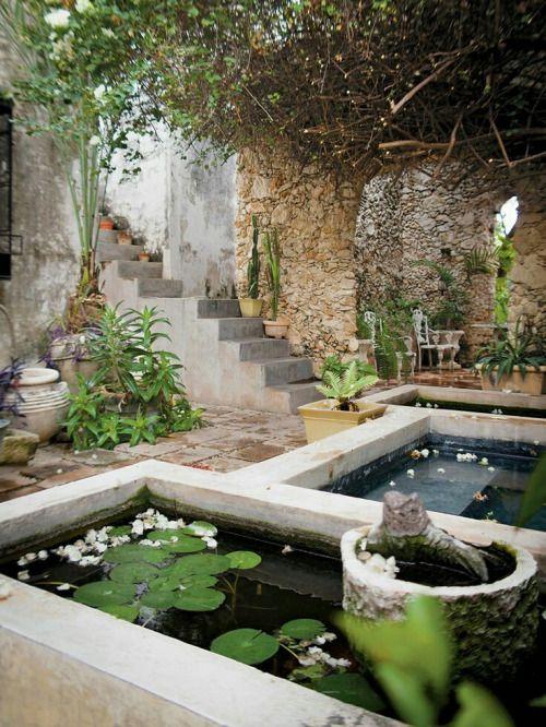 Explore Mexican Courtyard, Mexican Garden, And More!