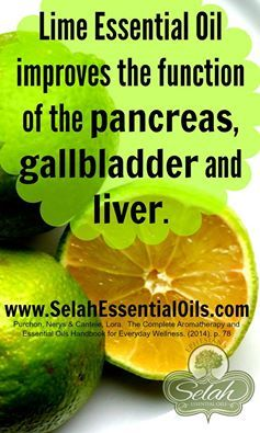 Lime essential oil improves the function of the pancreas, gallbladder and liver.  www.SelahEssentialOils.com