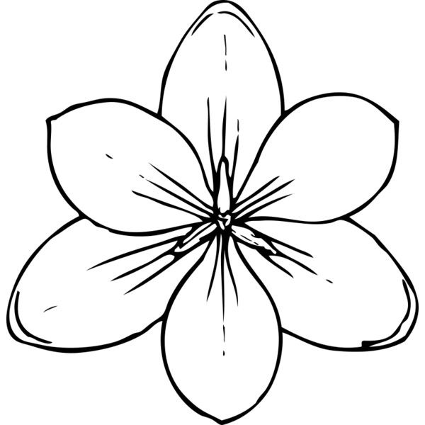 Dandelion Coloring Page Coloring Pages Flower Coloring Pages