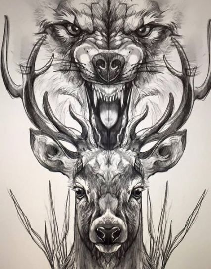 Photo of Tattoo wolf desing red riding hood 66+ best Ideas