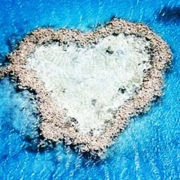 ハートリーフ オーストラリアのハミルトン島近郊にあるハート型の珊瑚礁。 - @his_japan- #webstagram