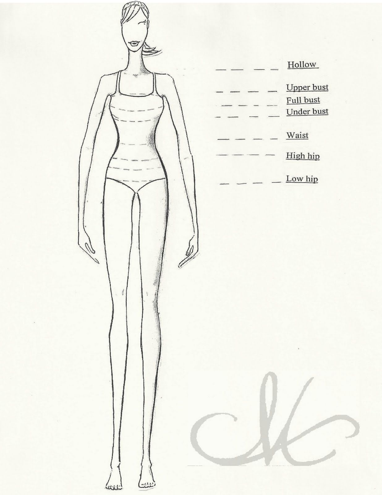 body shape diagrams body shape diagram [ 1236 x 1600 Pixel ]
