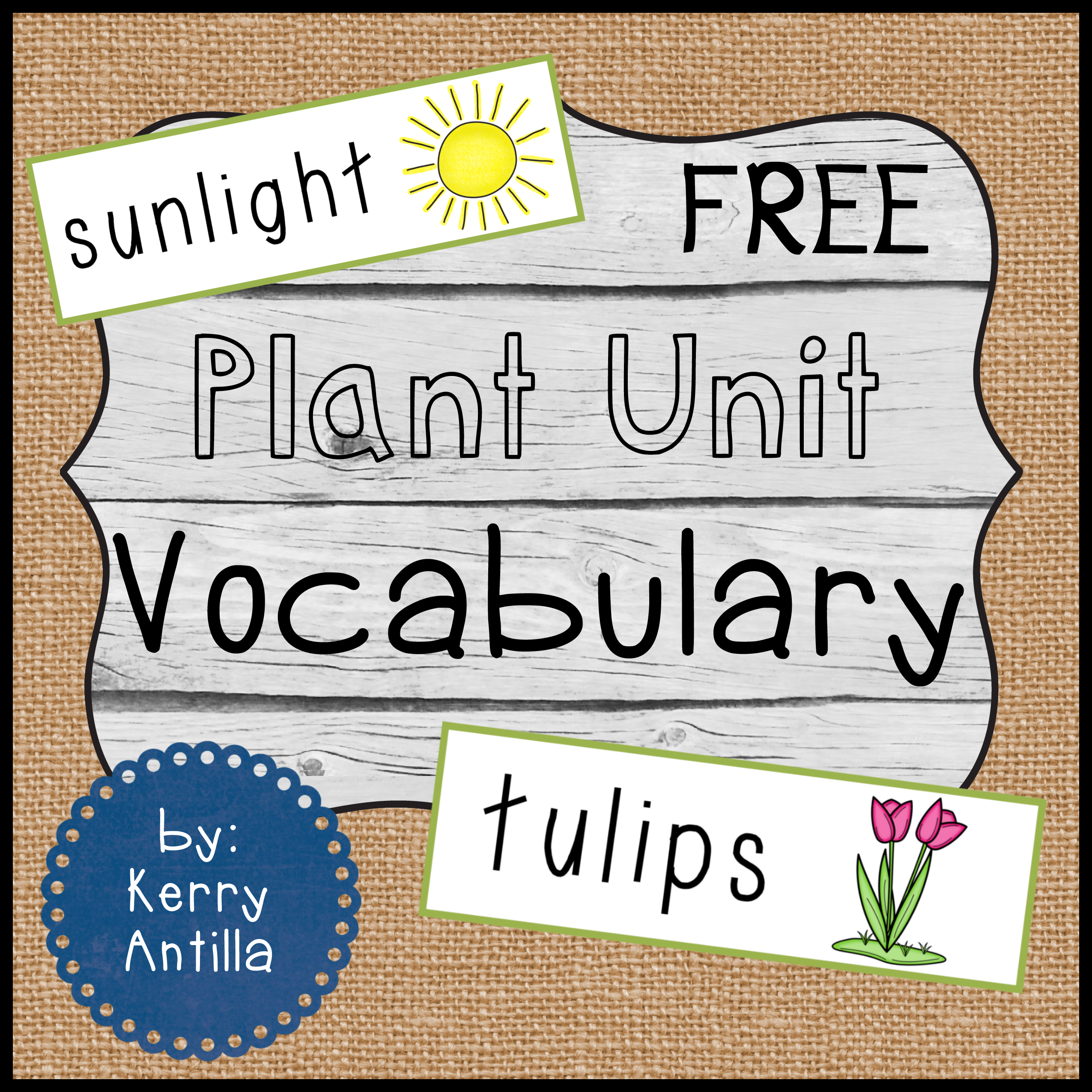 Plant Vocabulary Free