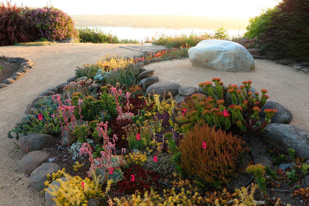 Open Invitation A Garden Design To Bring People Together Plant Id S Finegardening Garden Design Plants Rockery Garden