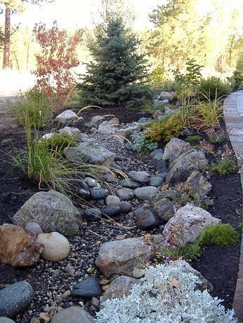 Landscape for the side yard with No Mow grass Norway Spruce and