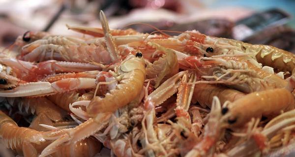 Des Américains tentent de créer des crevettes synthétiques