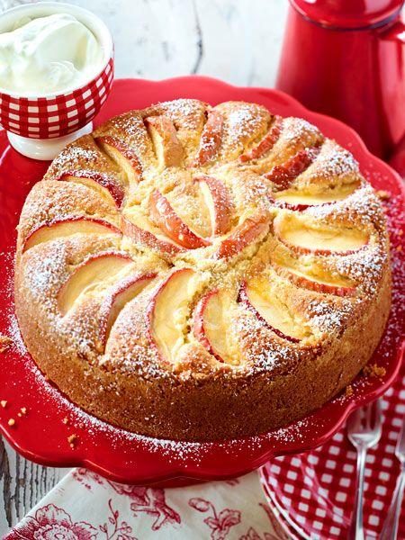 Apfel Mandel Kuchen Rezept Apfelkuchen Schnell Und Einfach