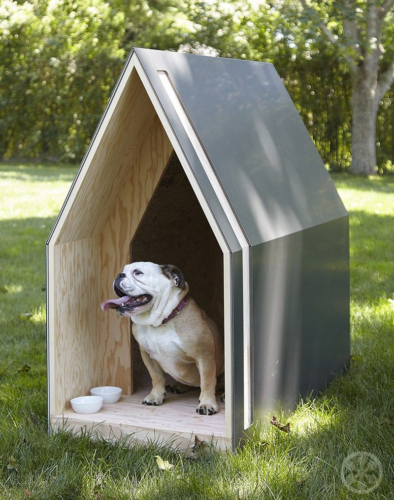 Arfitecture Architectural Pet Homes Raise Funds For Animal Rescue