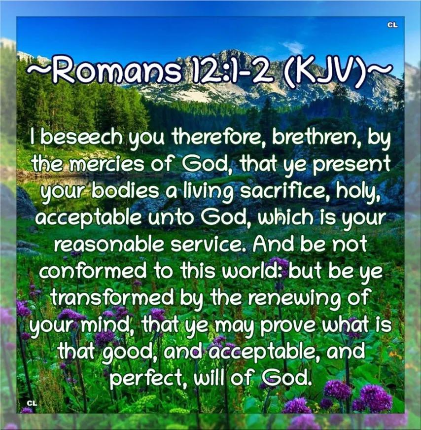 Romans 12:1-2 KJV  Hallelujah and more Blessings!! in 2020 | Kjv ...