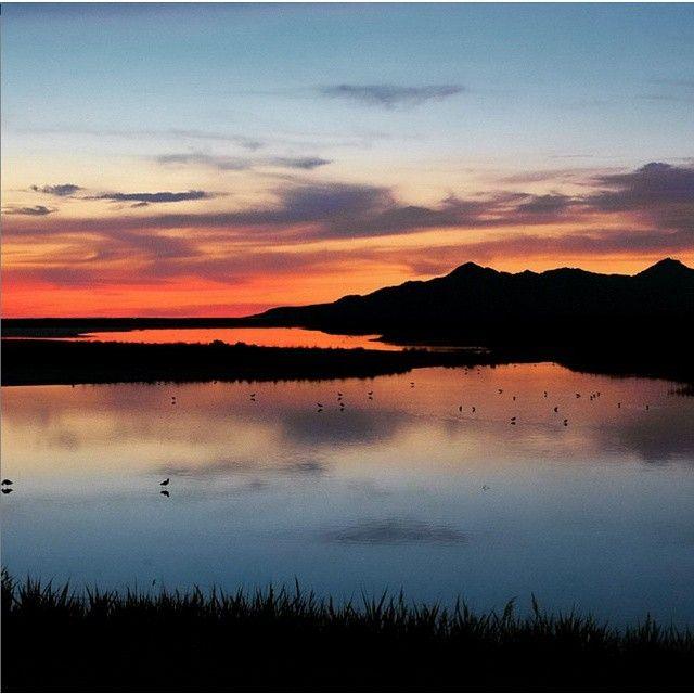 @jolie_gordon Sunset over Antelope Island.