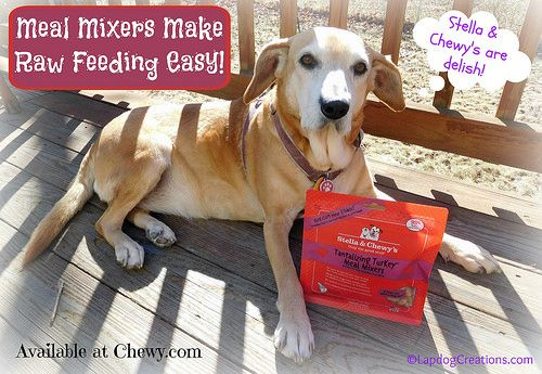 Stella Chewy S Meal Mixers Make Raw Feeding Easy