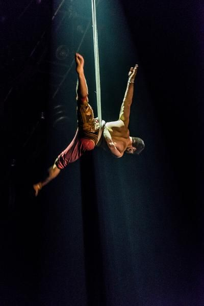 Using aerial straps that allow them to soar over the audience, two Herculean acrobats fly and crisscross to gasps and cheers.