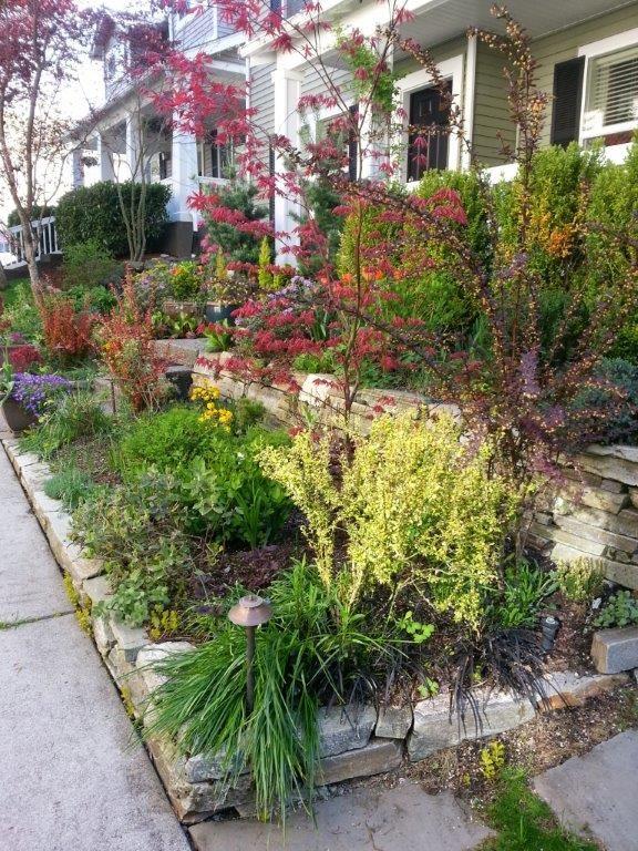 Jens Garden In Washington Day 1 Gardens Gardening Garden Art