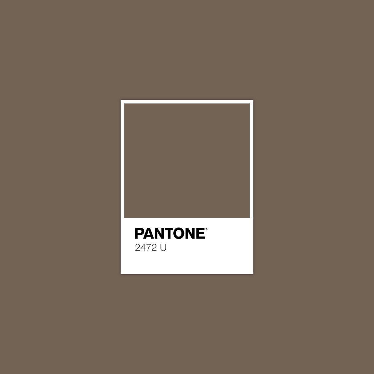 2472 U Pantone Colour Palettes Pantone Color Pantone