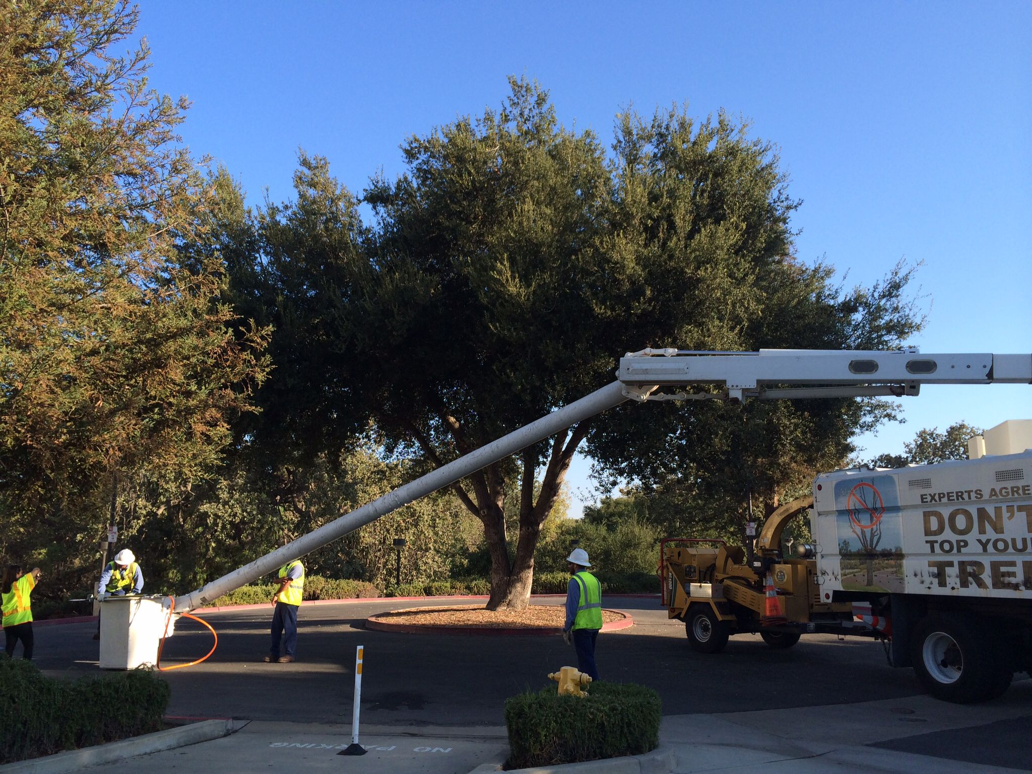 Prepping for new paving in the library parking lots this week.