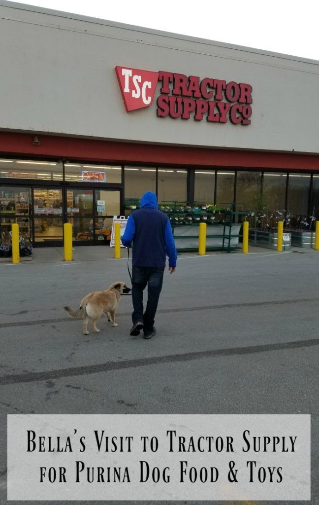 Bella S Visit To Tractor Supply She Had Such Fun Shopping For