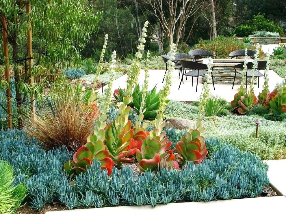 Image result for mid century modern flower bed | Modern ...