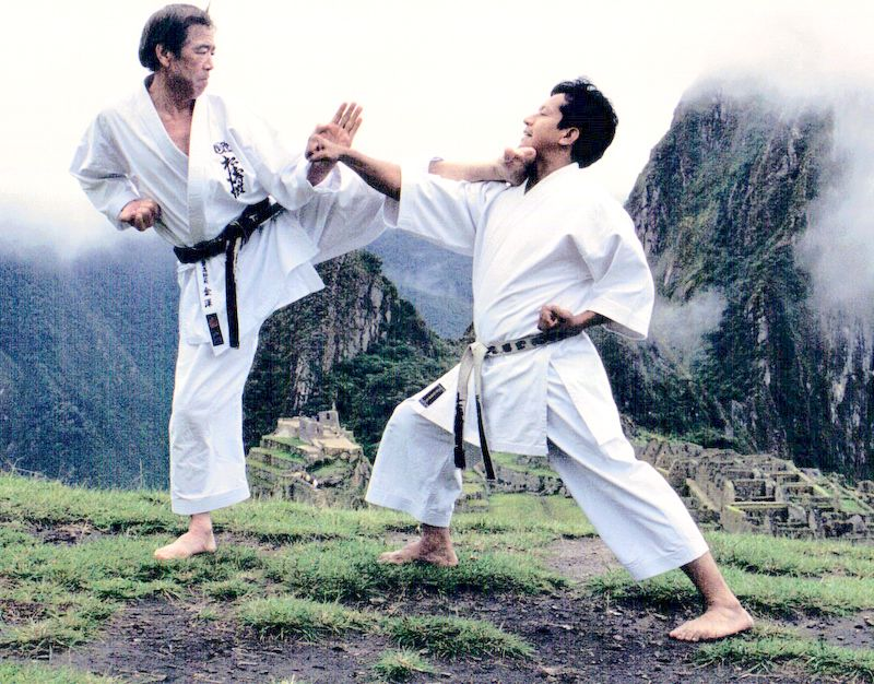 Pin On Fotos De Karate Do