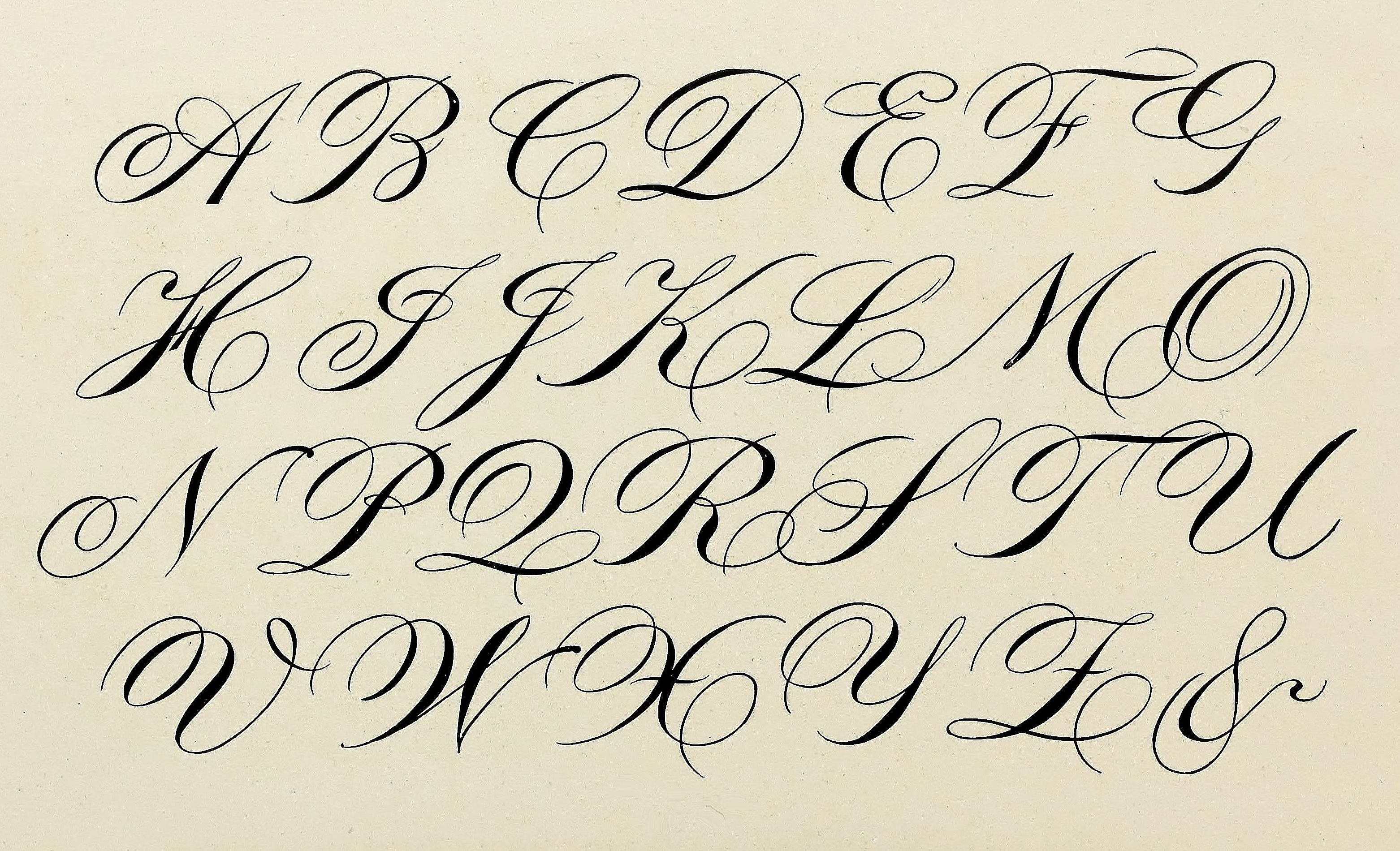 Lettering Design Calligraphy Cursive Handwriting Writing