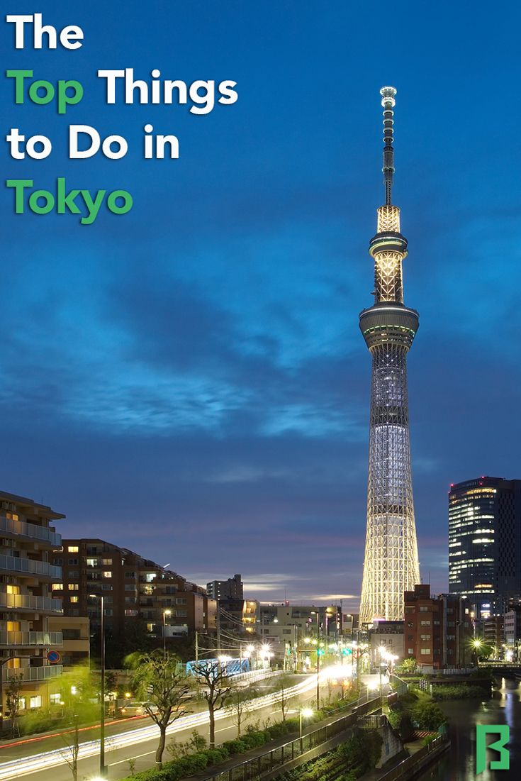 Make Tokyo Your Next Travel Destination As There Is Much To Do - 12 things to see and do in tokyo
