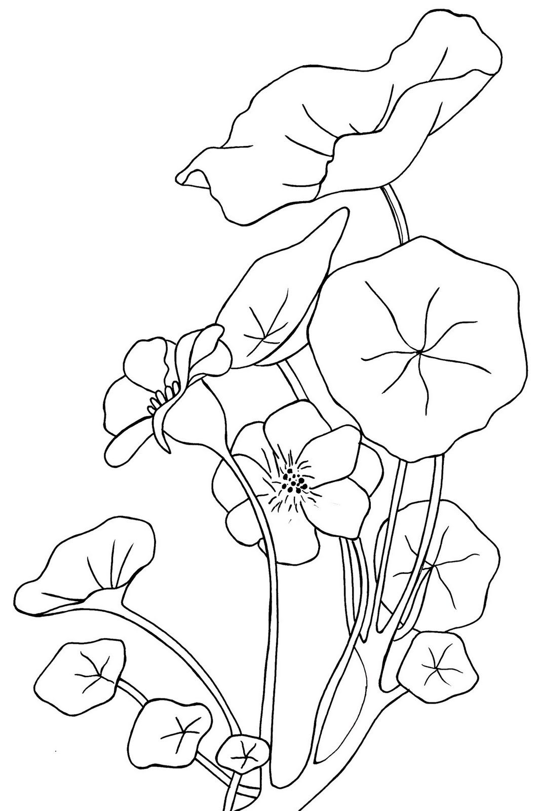 printable | disegni di fiori | Pinterest | Bordado, Diseños para ...