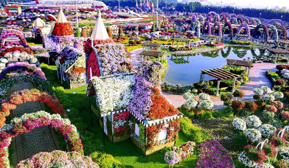 A Visitor's Guide To Miracle Garden Dubai Miracle garden