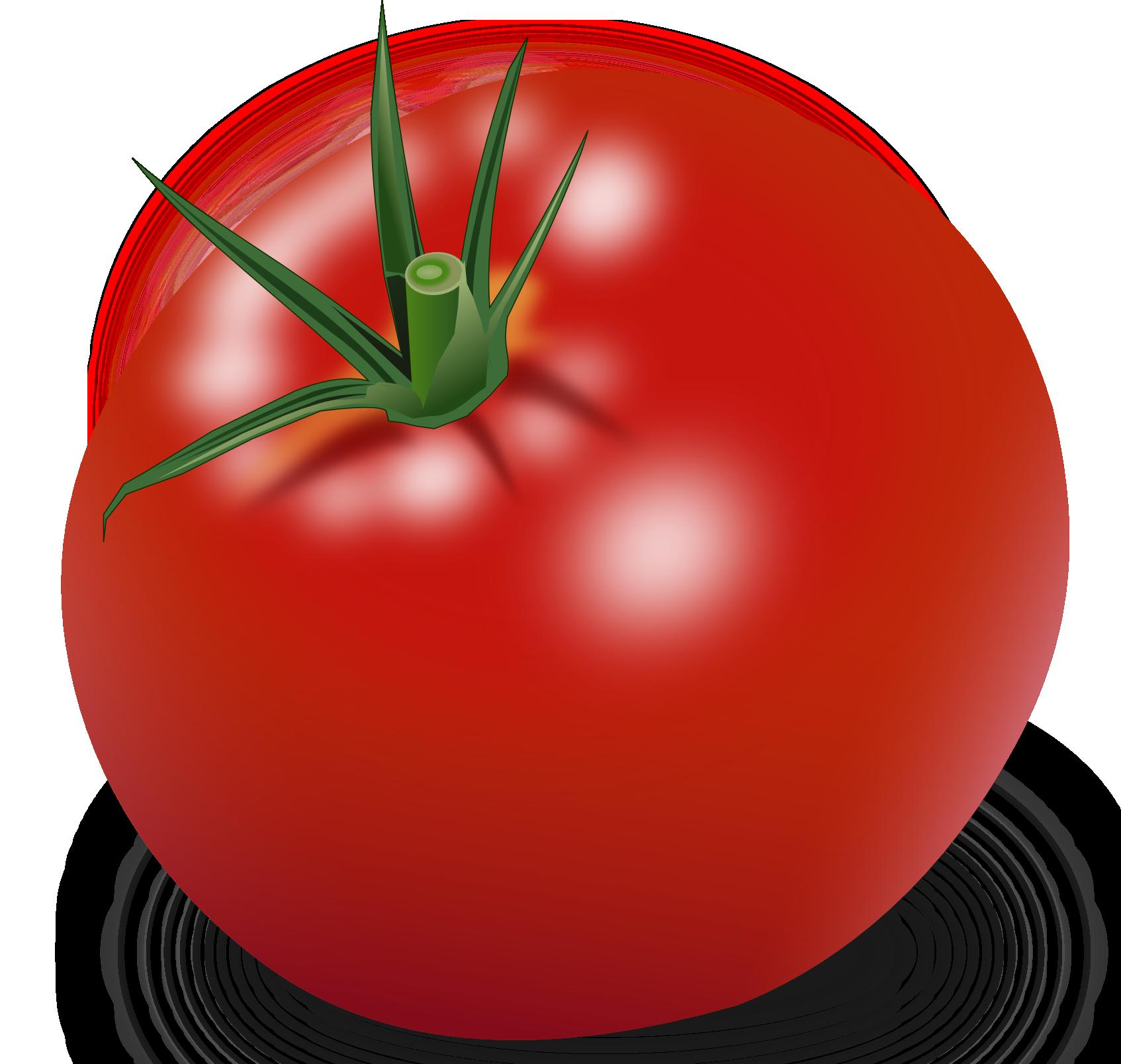 Tomato Plant Clip Art Free Vector Clipart Best Clipart Best Clip Art Garden Clipart Vegetable Drawing