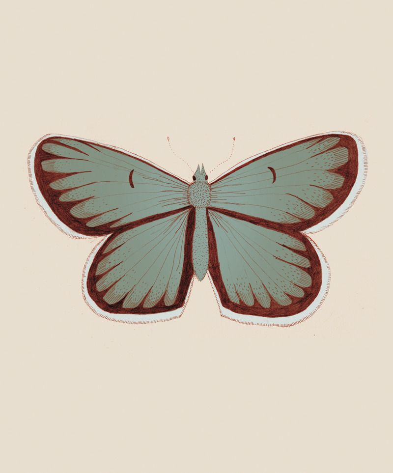 Butterfly days - mariadiamantes