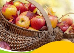 dieta da maça apple day