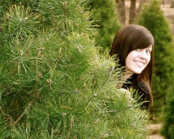 Cut-and-choose Your Own Christmas Tree All Across The