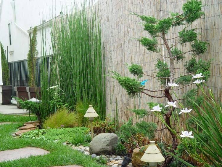 teich, grüne pflanzen und steine für eine schöne garten gestaltung - kleinen garten gestalten sichtschutz