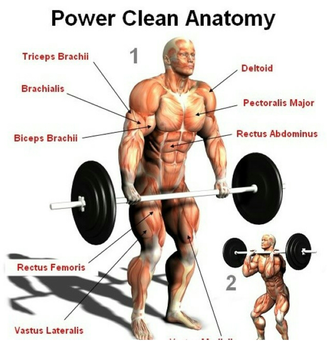 Power Clean. | So Nerdy. | Pinterest | Power clean, Crossfit and ...