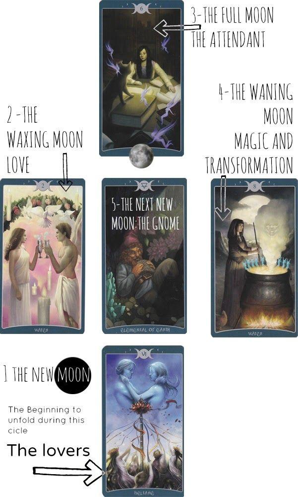 Wizard Angel Healer: New Moon Tarot Reading August-17-2013