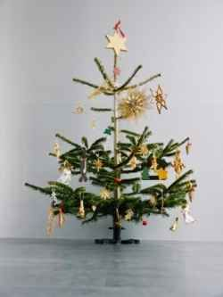 In this time of crisis, we need to be a little thrifty with things and that includes our Christmas decorations and our Christmas tree. Have you...