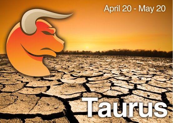 Taurus Zodiac Signs Taurus Taurus Taurus Star Sign