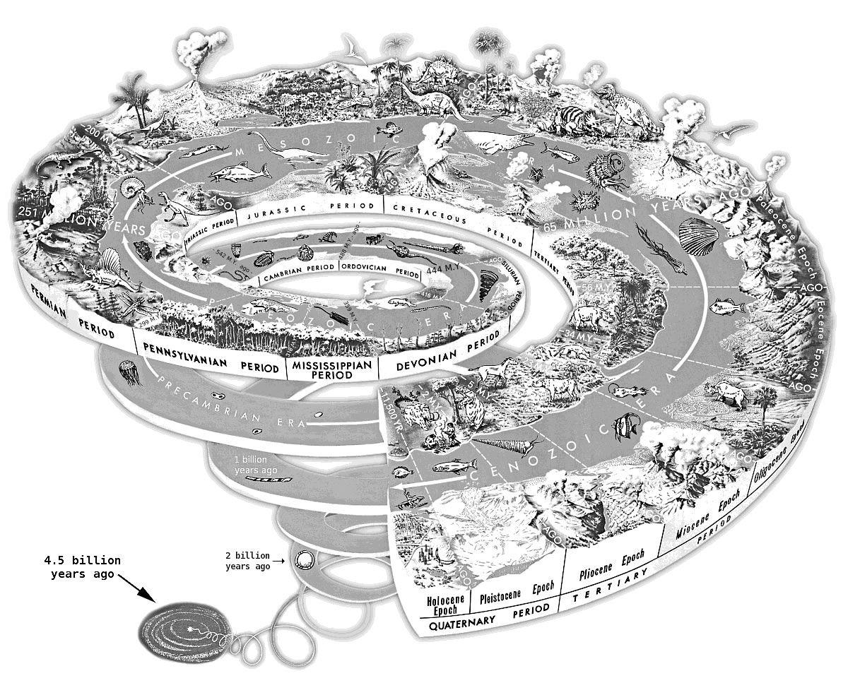 Evolutionary Spiral Timeline