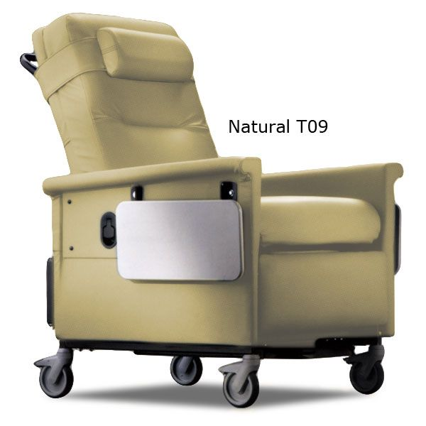 ch&ion chair | Ch&ion 56 Series Bariatric Recliner / Transporter  sc 1 st  Pinterest & champion chair | Champion 56 Series Bariatric Recliner ... islam-shia.org