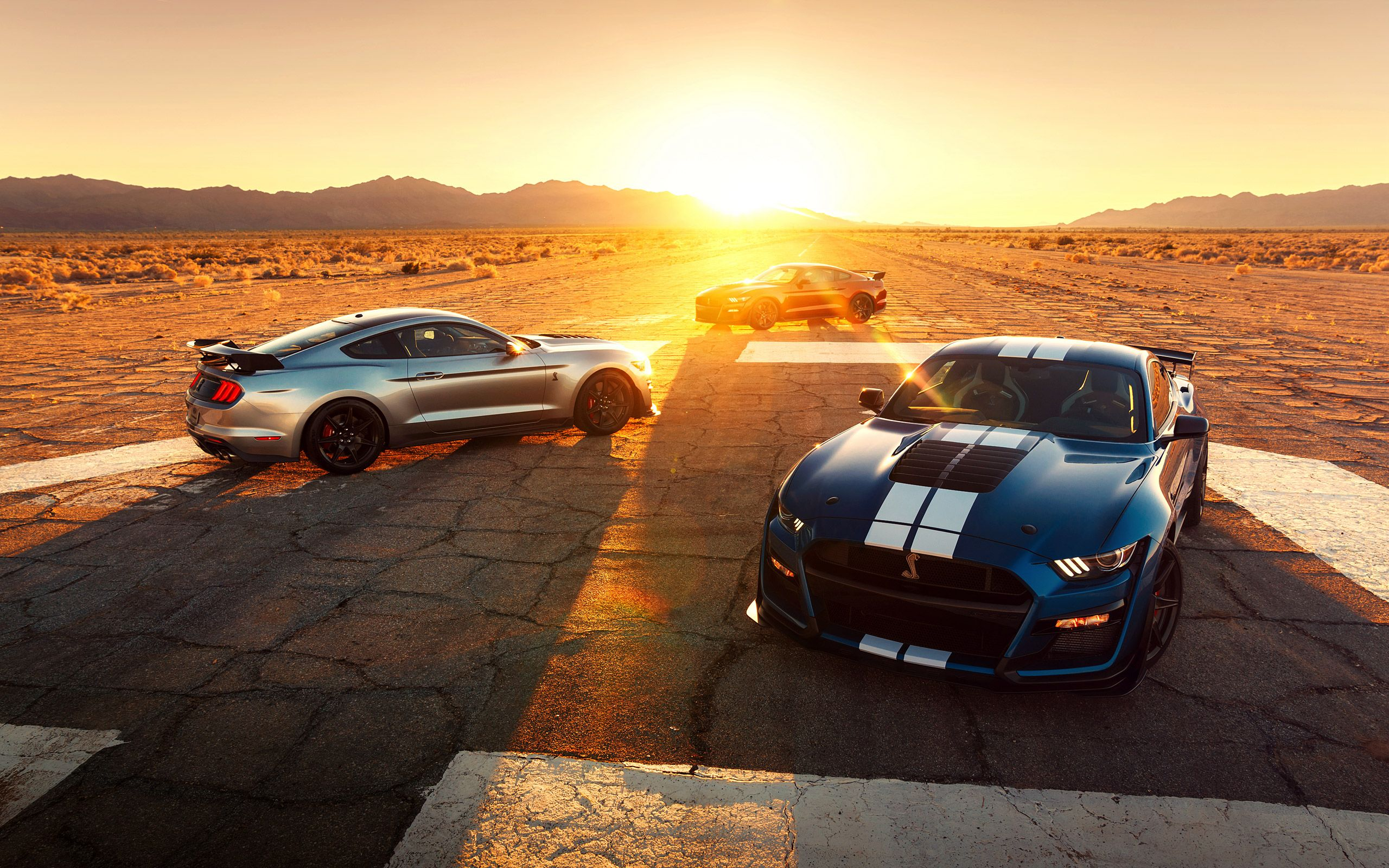 Download Your Free Wallpaper Wsupercars Ford Mustang Shelby
