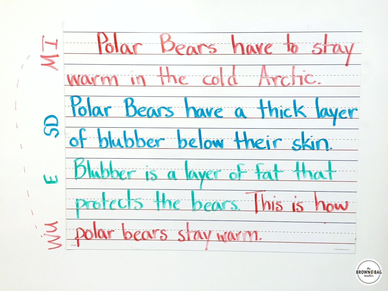 Paragraph Writing in 1st and 2nd Grade Paragraph writing