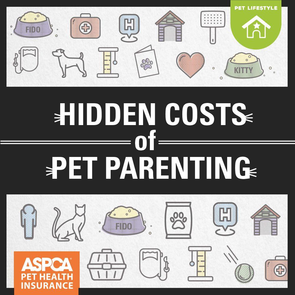 Hidden Costs Of Pet Parenting Pet Health Dog Insurance Pet Health Insurance