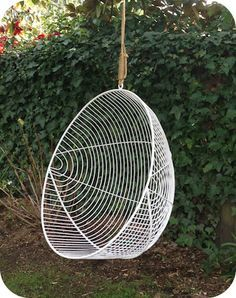 Rattan Swing Chair Nz Patio Lounge Cushions Canada Hanging Chairs Google Search Outdoor Ideas Pinterest