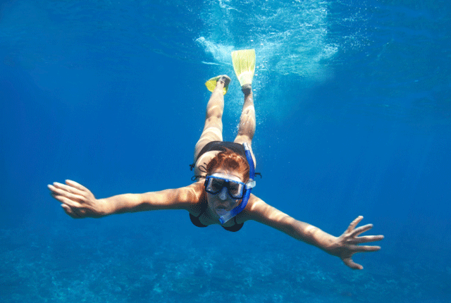 Scuba Diving Magazine, Snorkeling, Free