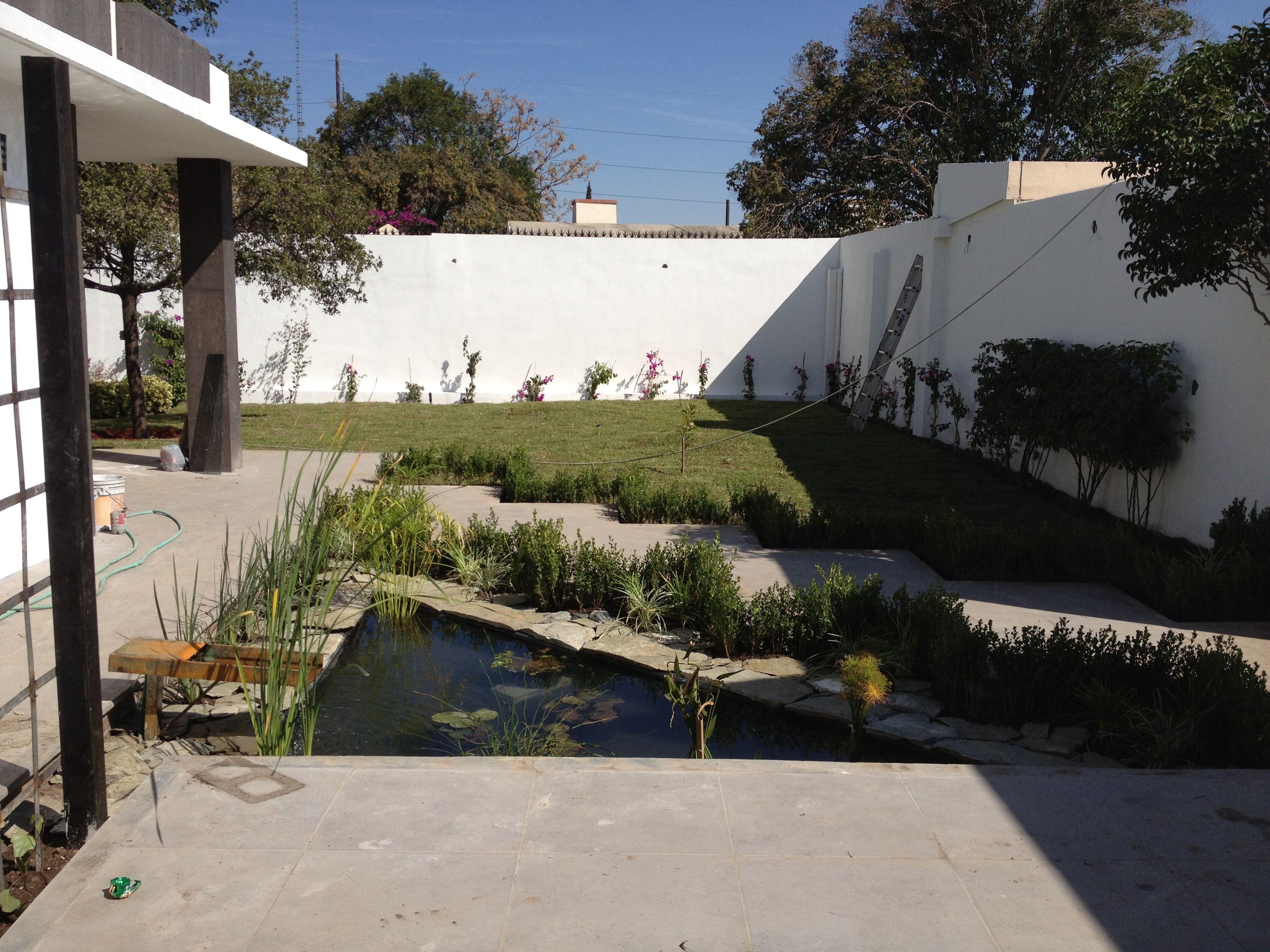 Estanque con plantas acuaticas + jardin