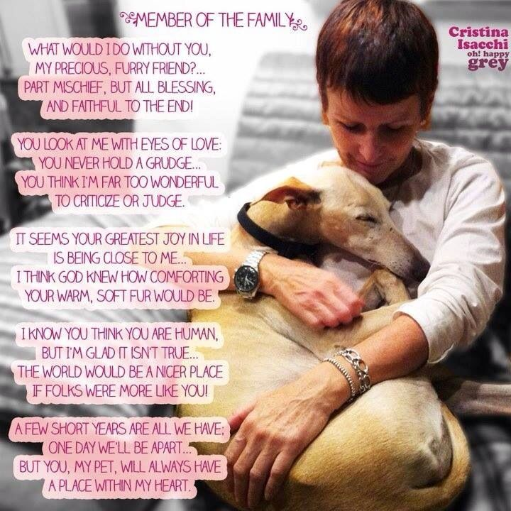 Pin by Lisa C on Must Love Dogs Dog love, Dog poems, I