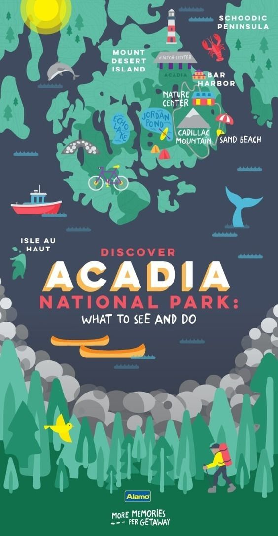 Things to See and Do in Acadia National Park Road trips Park and