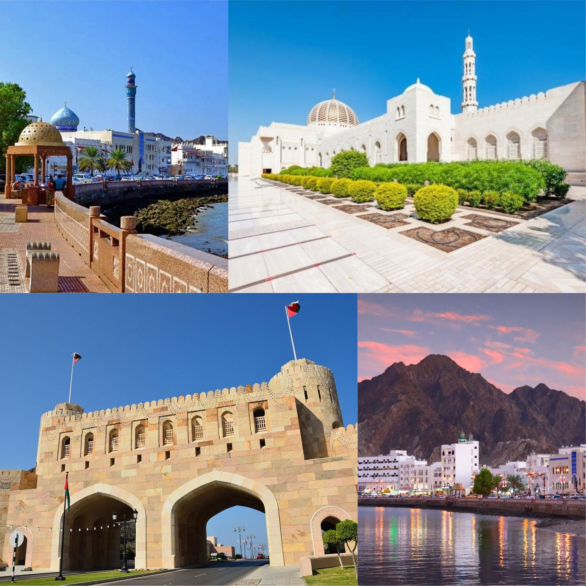 Explore The City Life Of Muscat City City Life Life