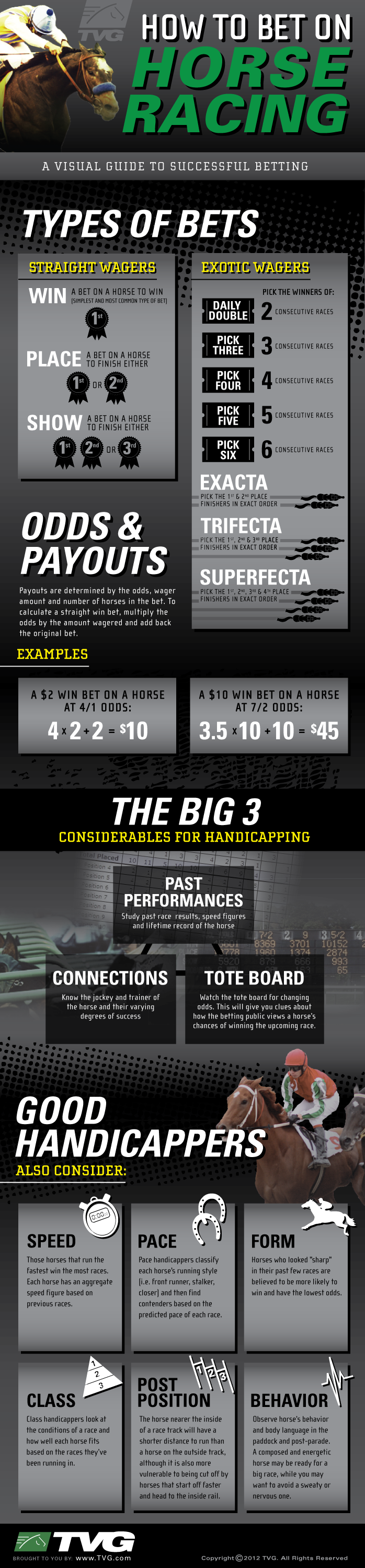 How To Bet On Horse Racing [INFOGRAPHIC] Horse racing