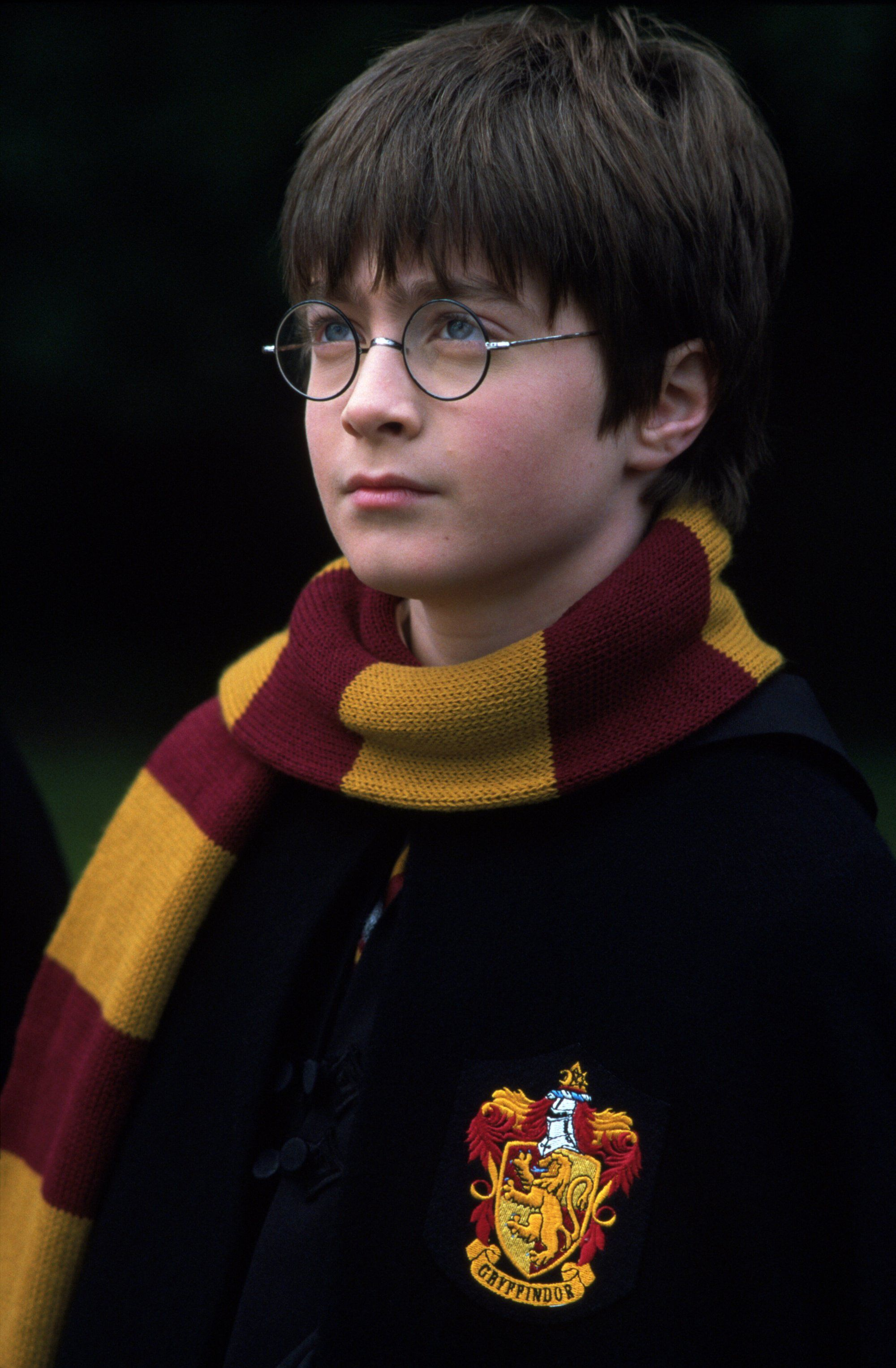 Harry Potter And The Philosopher S Stone Harry Potter Fan Theories Daniel Radcliffe Harry Potter Harry Potter Scarf