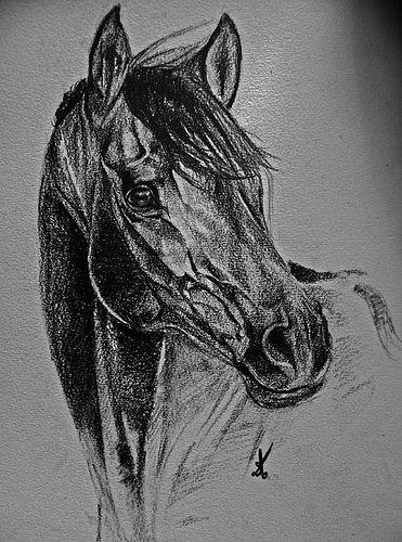 Dessin au crayon facile recherche google dessins pinterest dessin dessin difficile et - Dessins de chevaux facile ...