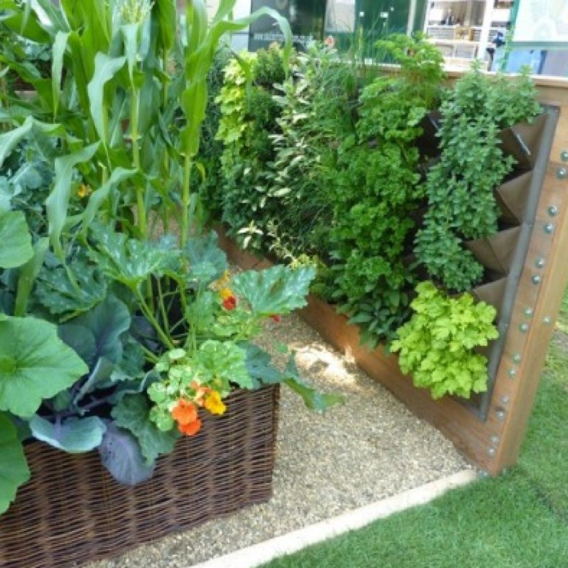 Growing Vegetables In Small Spaces | Vertical vegetable ...